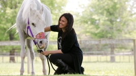 Jon Stewart Adopts Paint-Covered Horse; Ex-Owner Speaks