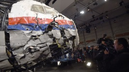 Russian-Made Missile Downed MH17: Investigators