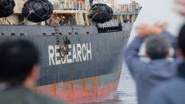 Japan's Whaling Fleet Set to Embark on Hunt for 333 Minke Whales