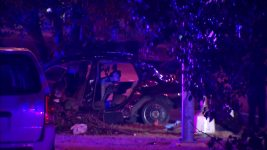 6 Die in Dallas When Car Hits Median, Crashes Into Tree