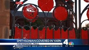 "Knitters ""Yarn-Bomb"" Smithsonian"