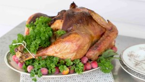 Don't Be a Turkey: Celebrate a Bird-Free Thanksgiving