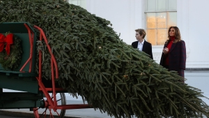 Tree 'Abandoned' by Farmer Picked for White House Christmas