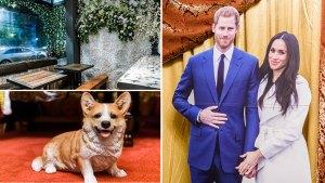 Photos: Inside DC's Royal Wedding Pop-Up Bar