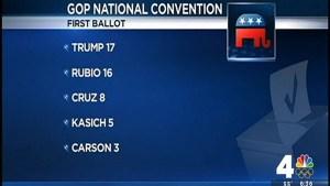 Trump, Cruz Supporters Fight for Delegates at VA GOP Convention
