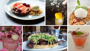 Cherry Blossoms Bring Specials to DC Bars, Restaurants
