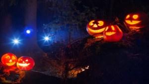 Week of Fun: Halloween Edition