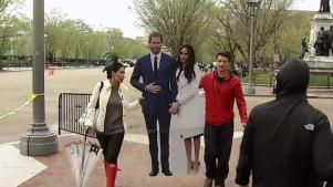 Cardboard Harry and Meghan Get Royal Tour of DC