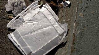 San Francisco Styrofoam Ban Said to Be Nation's Strictest