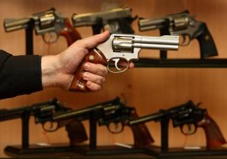 Md. Democrats Defeat GOP Effort to Weaken Gun Bill