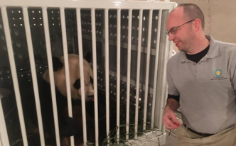 Bao Bao Lands in China After Leaving National Zoo
