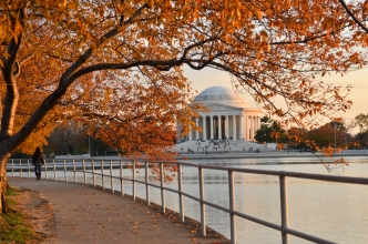 5 Ways to Enjoy DC's Warm Weather If You Play Hooky Friday