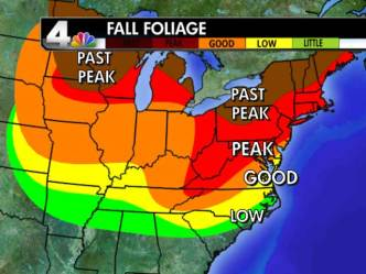 Your Fall Foliage Update: 10/29/10