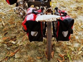 Hell on Wheels: Halloween Bike Ride in Dupont