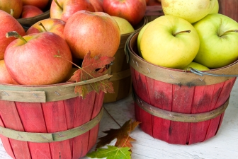 Va. Toasts the Apple for Hard Cider Week