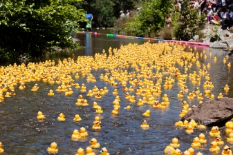 Onancock HarborFest: Rubber Duck Races & All