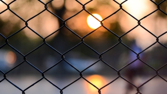 DC Woman Waits Months for Fence After Paying $1,600