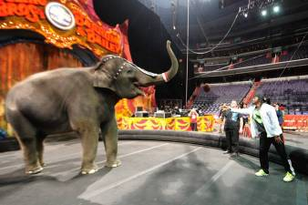 RGIII's Day at the Circus