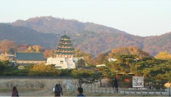 Full Episode: Taste of Korea
