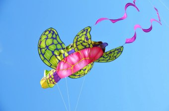 Kite Fest Meets Beer Fest in Virginia Beach