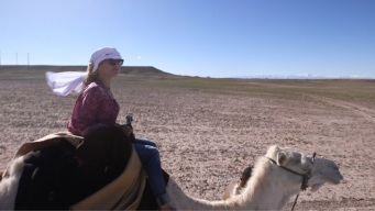Take a Camel Ride in Ouarzazate