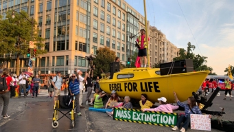 Climate Activists Block Busy DC Intersections for AM Rush