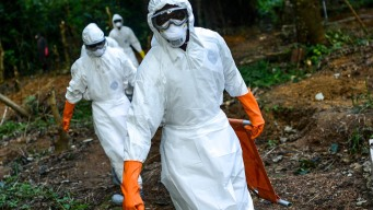 1st Human Trials of Ebola Vaccine to Start