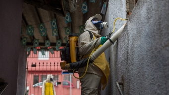 CDC: Zika Definitely Causes Severe Birth Defects