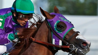 Nasal Strip Could Clog Chrome's Triple Crown Bid