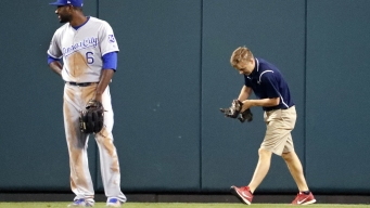 St. Louis Cardinals Searching for Cat That Inspired Rally