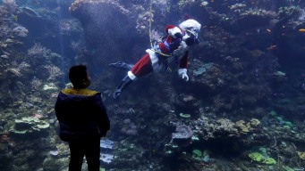 Scuba-Diving Santa Claus Delights Children in San Francisco