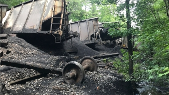 Cleanup of Spilled Coal in Great Dismal Swamp to Take Weeks