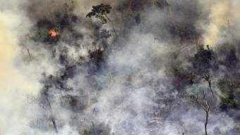 Amazon Rain Forest Fire Could Affect Climate