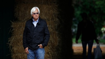 Preakness: Baffert-Trained Improbable 5-2 Favorite