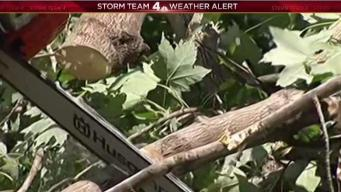 Cleanup After EF 2 Tornado Begins
