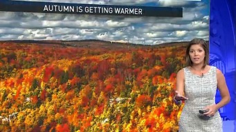 Fall Is Getting Warmer Due to Climate Change