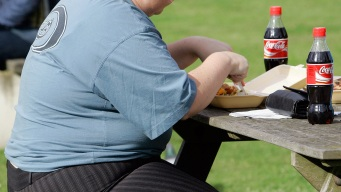 Saturated Fat Should Be Less Than 10 Percent of Diet: WHO