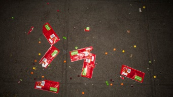 5-Second Rule Is Too Generous for Fallen Food: Study