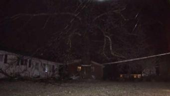 Icy Conditions Lead to Downed Trees and Wires