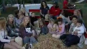 Kettle Corn, Hayrides and Fall Fun at Cox Farm