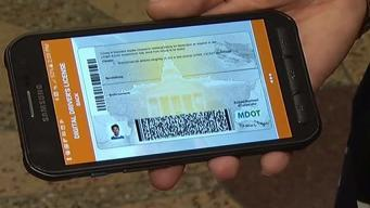 Maryland Driver's Licenses Going Digital