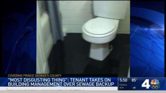 Tenant: Maryland Landlord Won't Help After Sewage Backup