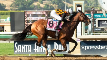 25th Horse Dies at Santa Anita Since Dec. 26