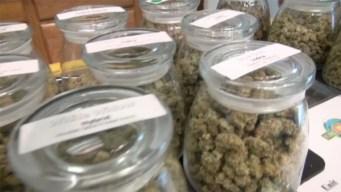 Kid-Friendly Cannabis?