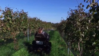 Virginia Vineyard Owners Help Out Colleague in Need