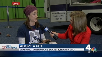 FROM 2016: Help Clear the Shelters at the Health & Fitness Expo