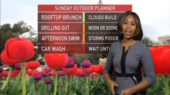 Morning Weather, June 23, 2017
