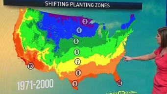 Warming Climate to Force Plants to Move North