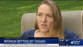 Woman Bitten by Snake at Virginia Restaurant
