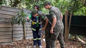 Zika Virus Spreads to 20 Latin American Countries